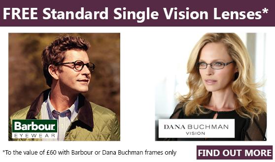 Dana Buchman Promotion